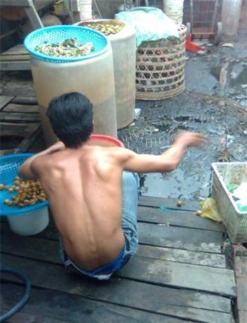 Chanh muối được ngâm vào các thùng phuy ngay cạnh cống bẩn.