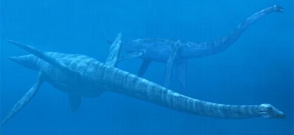 top 10 động vật thời tiền sử quái ác nhất dưới biển 10