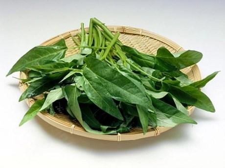Lượng độc trong rau không đến được tiêu tán hết sẽ tích lũy trong cơ thể, lâu dài sẽ gây ra bệnh.