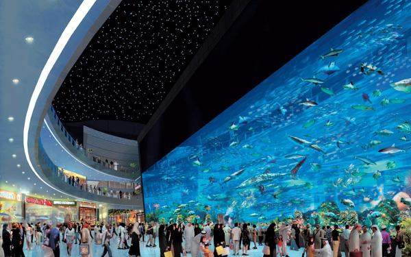 Bể cá khổng lồ ở các trung tâm thương mại.