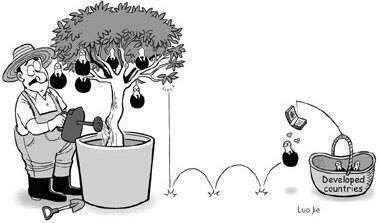 Ảnh minh họa: Các quốc gia phát triển