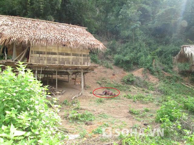 Lán trại của gia đình anh Lô Văn Thọ ở bản Phồng, nơi cả 4 người trong gia đình anh bị giết hại dã man.