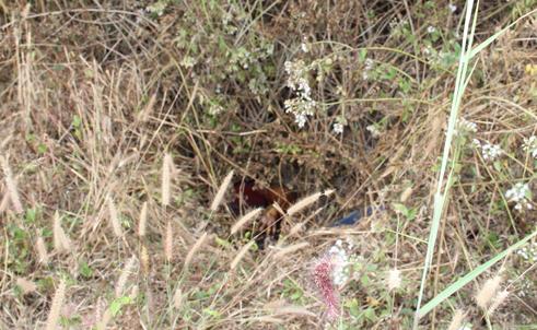 Thi thể nạn nhân được phát hiện