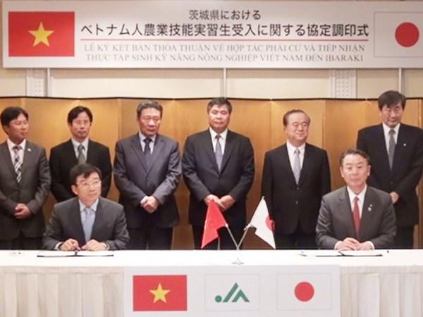 Tỉnh Ibaraki hợp tác về nông nghiệp với Việt Nam.