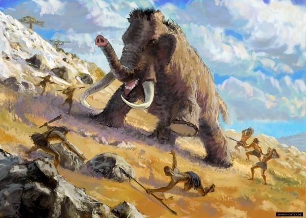 Con người tiền sử thường săn voi theo nhóm