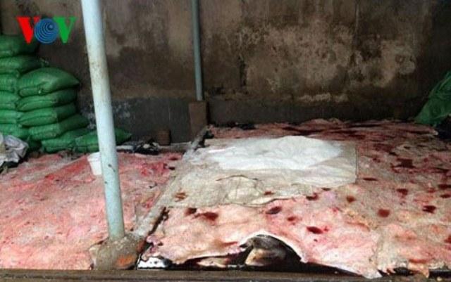 Gần 2 tấn da, chân trâu bò hối thối được phát hiện tại cơ sở của ông Hà Văn Thảo và vợ là bà Lê Thị Yến (có địa chỉ tại phường Ngọc Trạo - TP Thanh Hóa) hồi tháng 1/2015. Ảnh: VOV