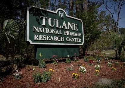 Trung tâm nghiên cứu Tulane, nơi để lọt loại vi khuẩn nguy hiểm ra ngoài
