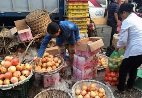Nhờ buôn hoa quả Trung Quốc mà nhiều người kiếm được tiền tỷ, xây được nhà lầu