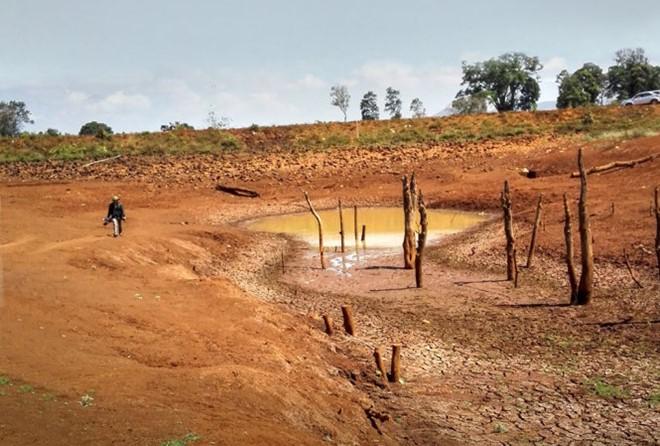 Hồ Ea Blong 1, xã Ea Sol, huyện Ea HLeo, Đắk Lắk đã cạn khô. Ảnh: Ngô Minh Tường/Tuổi trẻ