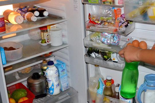 Đôi khi tủ lạnh có mùi khó chịu do thịt cá hoặc những loại thực phẩm nặng mùi khác bám vàoẢnh: Tấn Thạnh