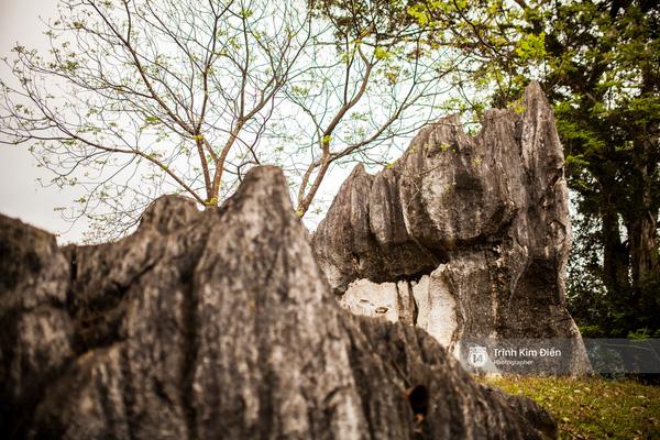 Thung lũng Chà Nòi nhìn từ Đèo Đá Đẽo xuống cũng là một trong những nơi xuất hiện nhiều cảnh quay hoành tráng. Đèo Đá Đẽo nằm trong quần thể Phong Nha Kẻ Bàng, đèo dài 17 km nằm trên đường Hồ Chí Minh, thuộc địa phận xã Thượng Hóa, huyện Minh Hóa, tỉnh Quảng Bình. Đây là nơi sở hữu nhiều cảnh đẹp hùng vĩ, lộng lẫy và không kém phần huyền bí.