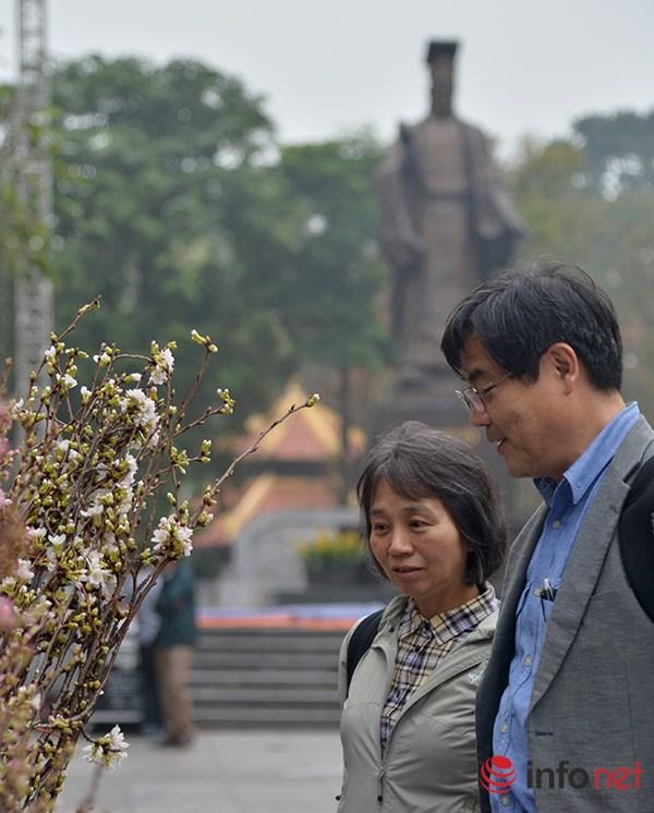 Buổi giao lưu văn hoá giữa hai nước và lễ tiếp nhận cây hoa anh đào sẽ diễn ra từ ngày 19 đến 20/3 tại Vườn hoa Lý Thái Tổ (Hà Nội).