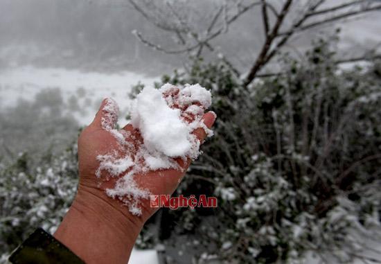Những ai thích khám phá thì cảm giác được nâng bông tuyết trắng thật tuyệt.