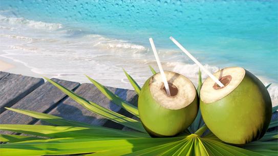 Bài thuốc chữa loét miệng từ Nước cốt dừa
