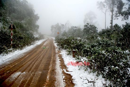 Đường lên Pu Xai Lai Leng - đỉnh núi cao nhất Bắc miền Trung ở Kỳ Sơn.