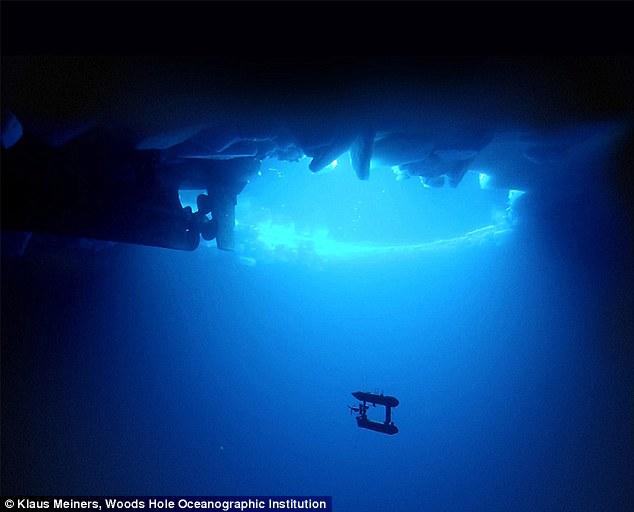 Hình ảnh robot thám hiểm Nam Cực của nhóm các nhà nghiên cứu quốc tế. Ảnh: Klaus Meiners/Woods Hole Oceanographic Institution.