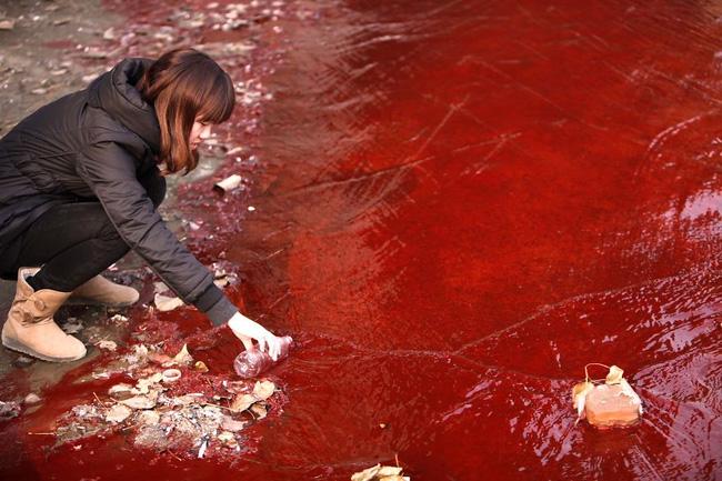 Loạt ảnh chấn động cho thấy đại dương đang trở thành hố rác khổng lồ của nhân loại - Ảnh 25.