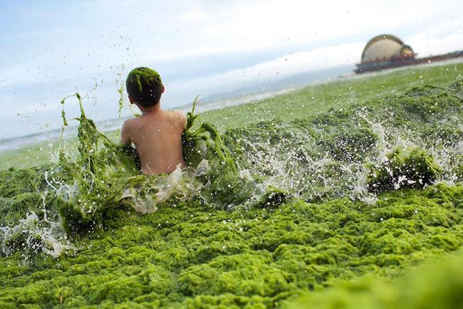 Loạt ảnh chấn động cho thấy đại dương đang trở thành hố rác khổng lồ của nhân loại - Ảnh 28.