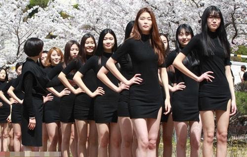 Vừa qua, buổi catwalk ngoài trời của những nữ sinh Hàn Quốc sở hữu đôi chân dài miên man dưới tán hoa anh đào đã khiến cộng động mạng xôn xao.