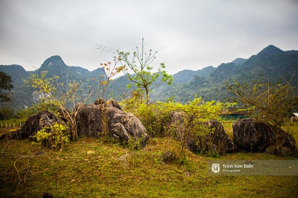Làng Yên Phú ( làng đá mọc) với những phiến đá vôi, thạch nhũ mọc lên từ mặt đất.