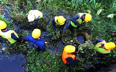 Nhân viên công ty thoát nước đô thị TP vớt rác lục bình tại tại rạch Dừa - rạch Ông Hóa, quận 2, sáng 6-3. Ảnh: HOÀNG GIANG