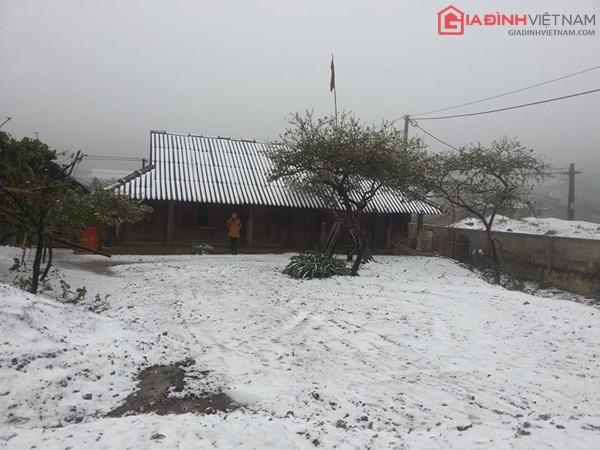 Tuyết rơi tại Vân Hồ, Mộc Châu 12h trưa nay (Ảnh: Mai Nguyên Hạnh/ Gia đình Việt Nam)