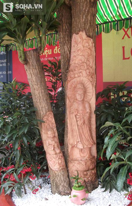 Cạnh đó, gian hàng của anh Dũng thu hút khá nhiều sự quan tâm của người xem bằng những chậu cây phát tài có khắc hình Phật Di Lặt, Bồ tát Quan Âm.