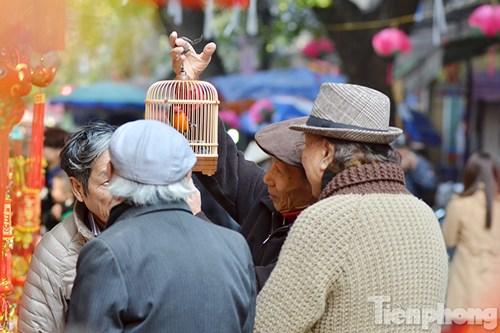 Những cụ già tại chợ hoa Hàng Lược.