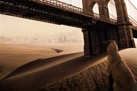 Sa mạc hóa