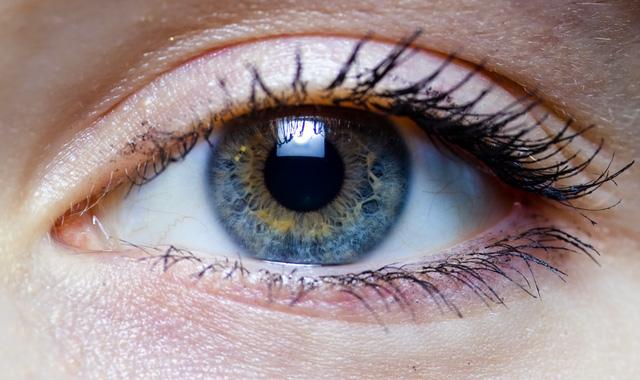 Sự tiến hóa của mắt là có thể giải thích.