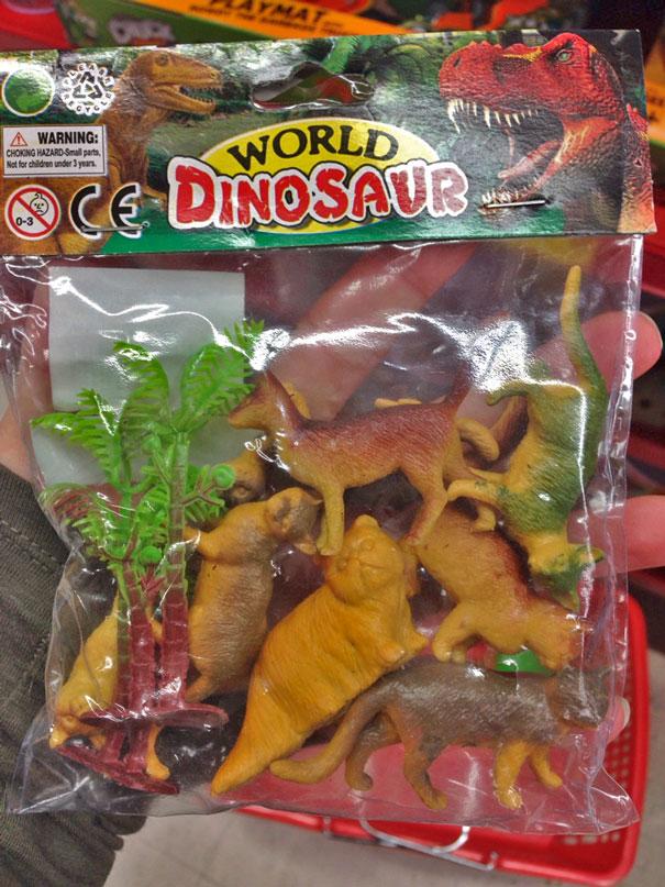 5. Hóa ra, mèo tiến hóa từ khủng long.