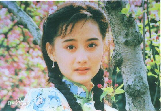 Hai năm sau cô nhận được vai diễn chính trong bộ phim tình cảm Mai Hoa Lạc của nữ sĩ Quỳnh Dao, đây là bộ phim truyền hình đầu tiên của Trần Đức Dung.