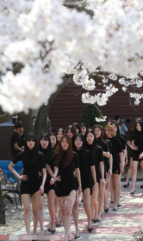 Buổi catwalk ngoài trời cực kỳ thu hút sự chú ý của người dân xung quanh bởi, vẻ đẹp của những nữ sinh viên tuổi đời còn rất trẻ, diện những chiếc váy ôm màu đen bó sát, khoe triệt để nét đẹp thanh xuân của mình.
