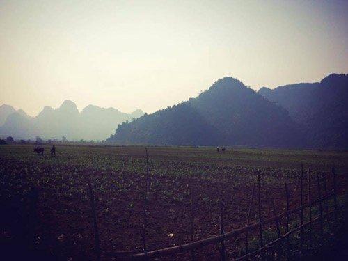 Cánh đồng tại Yên Phú được đoàn làm phim sử dụng làm bối cảnh. Đoàn phim King Kong 2 đã đền bù cho những người dân bị ảnh hưởng bởi quá trình quay phim quanh khu vực này.