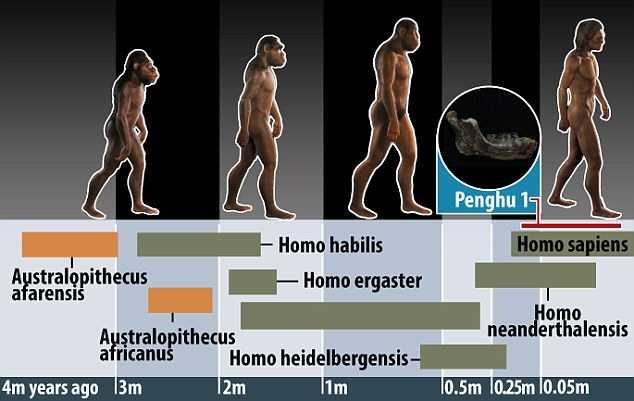 Phần hàm dưới khác biệt rõ ràng so với người Homo erectus ở miền bắc Trung Quốc và Java. Nó có thể là đặc điểm đại diện cho một chủng người chưa được biết đến,CNNdẫn lời chuyên gia Yousuke Kaifu nói, khẳng định dù đây chỉ là một mẩu hóa thạch nhỏ, nhưng ý nghĩa của nó rất lớn.