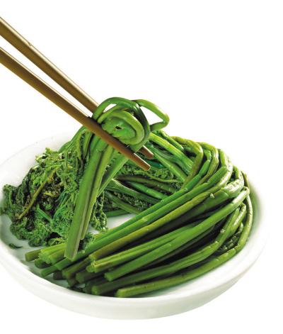 Rau dương xỉ (rau dớn) rất phổ biến ở các tỉnh miền núi