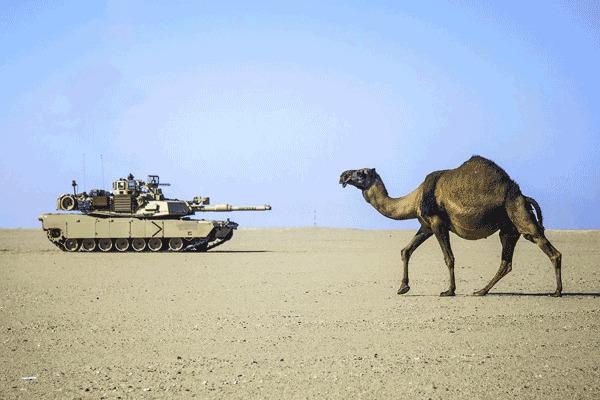 Abrams là xe tăng chiến đấu chủ lực chính của Mỹ cũng như các đồng minh Saudi Arabia, Ai Cập, Australia và Iraq.