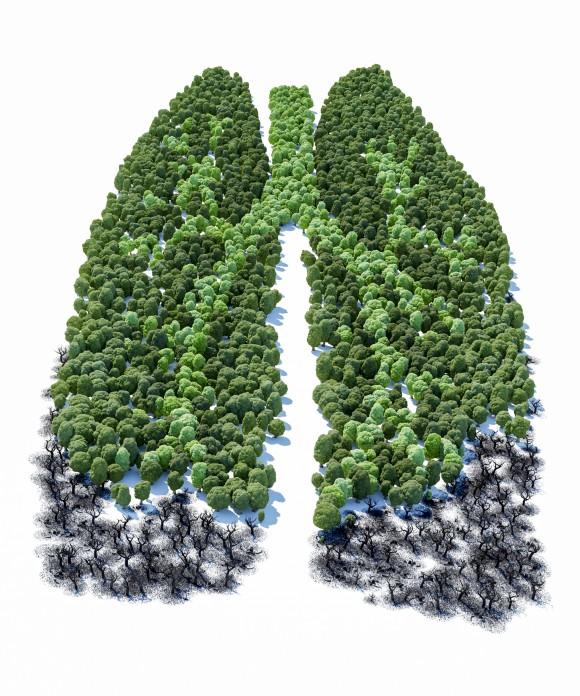Có thể bạn không tin, nhưng giữ cho phổi khỏe mạnh là giúp cho làn da mình sáng đẹp.