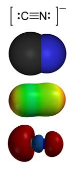 Cơ chế hoạt động của xyanua [C≡N]-.