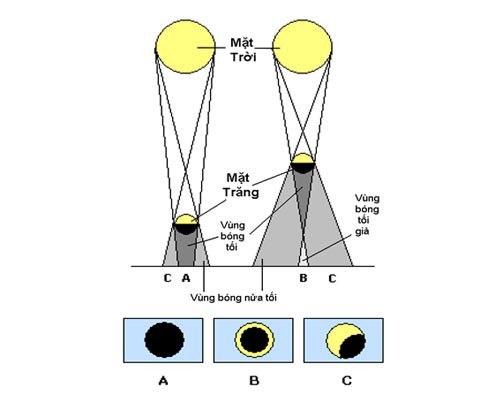 So sánh giữa nhật thực toàn phần (trái) và nhật thực hình khuyên (phải). Nếu đứng trong vùng bóng tối (a), vùng bóng tối giả (b) và vùng bóng nửa tối (c) thì sẽ quan sát được tương ứng nhật thực toàn phần, hình khuyên và một phần. Đồ họa: HAAC.