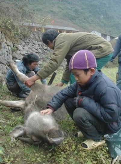 Hình ảnh ghi lại ở huyện Bình Gia, Lạng Sơn. Ảnh: Gia đình&Xã hội