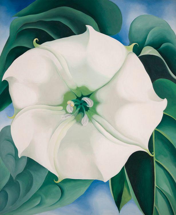 Bức tranh Hoa trắng được vẽ trong năm 1932.