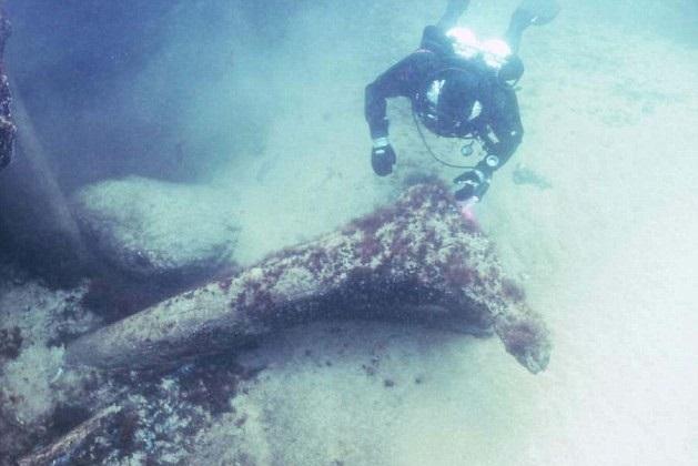 Một khúc gỗ 11.000 năm tuổi được tìm thấy dưới đáy biển Baltic. (Nguồn Discovery)