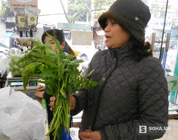 Những loại rau rừng ban đầu rất khó ăn vì đều có vị hơi đăng đắng, nhưng ăn vào sẽ thấy mát, thơm.