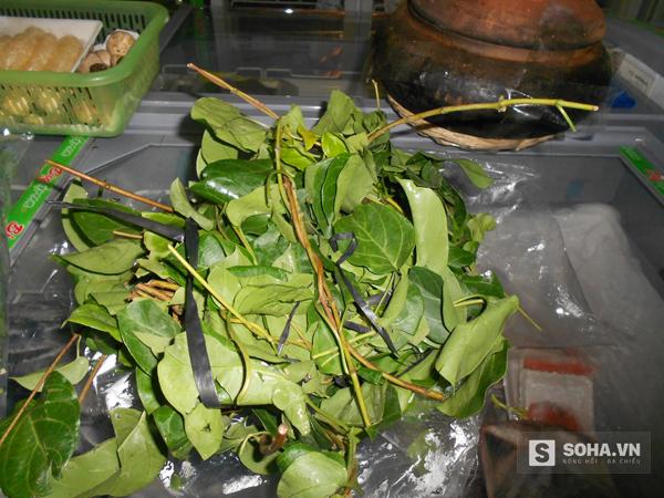 Lá giang - loại rau rừng nấu canh hoặc xào với thịt gà, cá nước ngọt, thịt bò hoặc làm canh chua rất ngon.