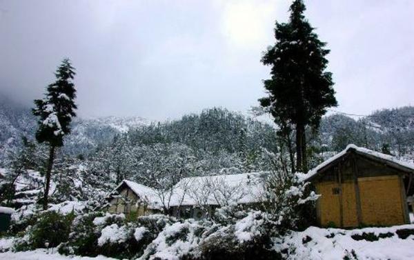 Tuyết rơi tại xã Y Tý. Ảnh: Báo Lào Cai