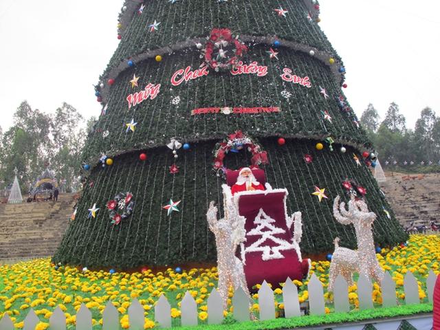 Theo những giáo dân tại đây cho hay, cây thông này được chuẩn bị vật liệu cách đây khoảng 1 tháng. Từ ngày 6/12, 30 nhân công bắt tay làm việc cả ngày lẫn đêm đến ngày 21/12, cây thông này mới hoàn thiện.