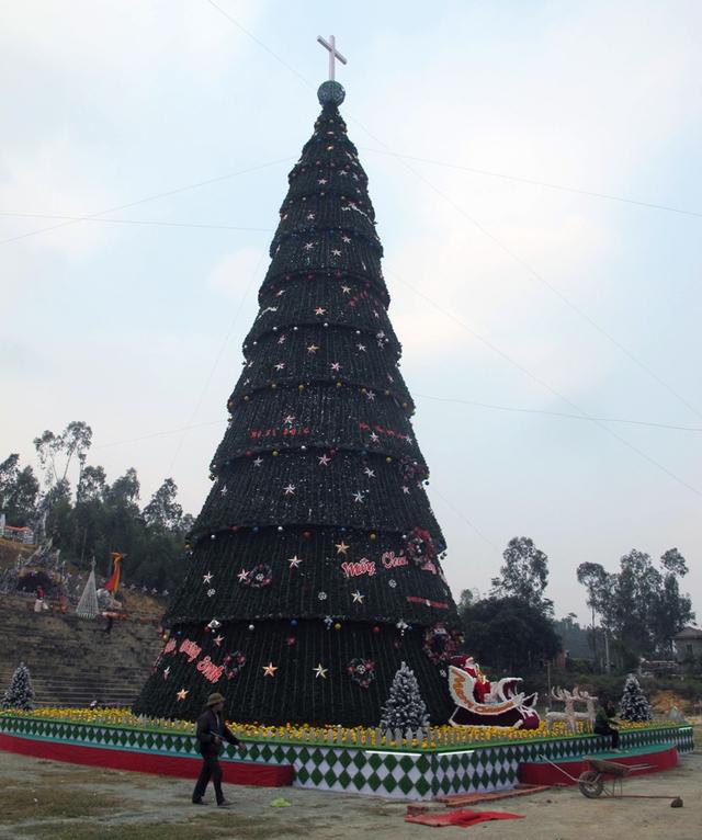 """Tại Linh địa Trại Gáo (xã Nghi Phương, Nghi Lộc, Nghệ An) người dân nơi đây đang hoàn thiện cây thông Noel với kích thước siêu """"khủng"""" để đón mùa giáng sinh mới."""