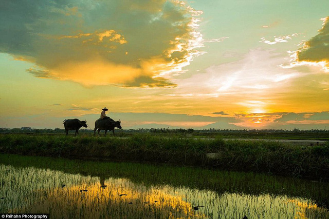 Bộ ảnh tuyệt đẹp của nhiếp ảnh gia rời nước Pháp vì yêu Việt Nam