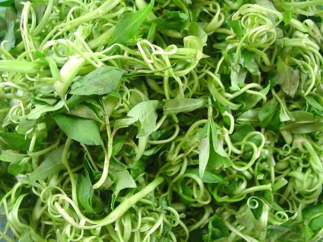 Nếu ăn rau muống sống có chứa sán lá ruột lớn Fasciolopsis buski sẽ gây chết người